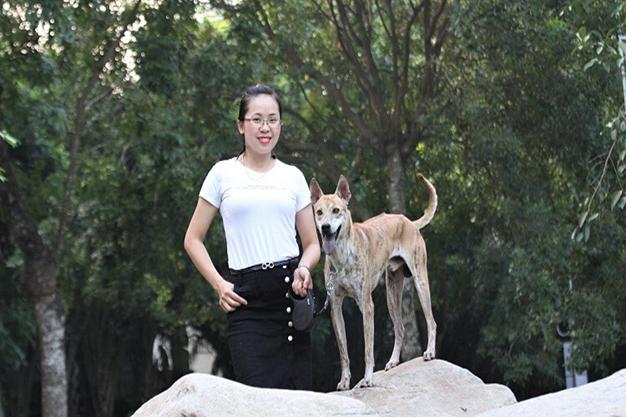 Huấn luyện chó Phú Quốc